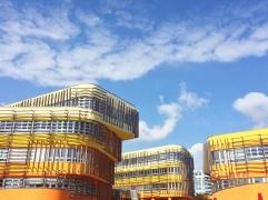 I colori nel campus universitario
